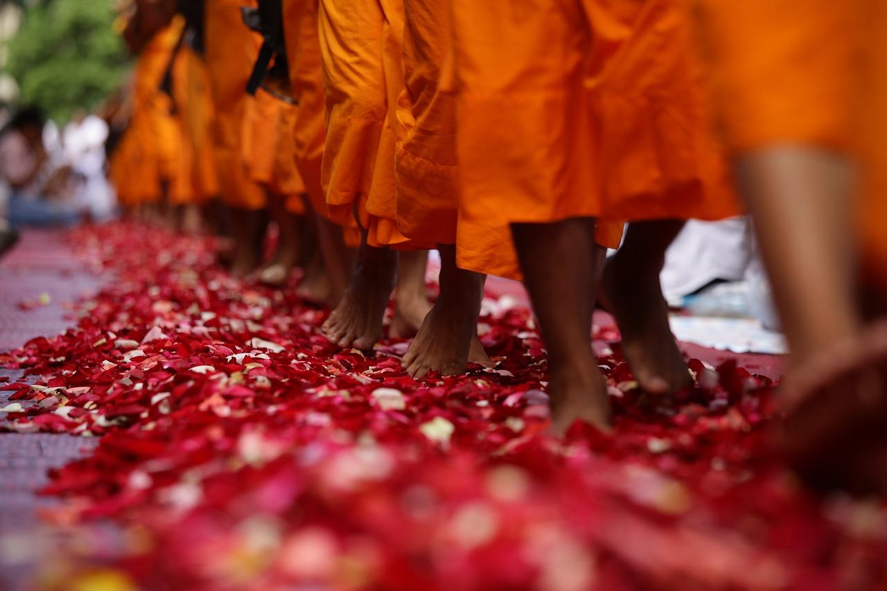 cammino-sentiero-percorso-yoga-ayurveda-sonia-manfra-yoga-ratna-ticino